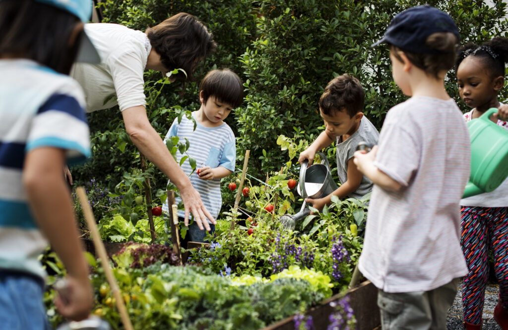 grow a children's garden
