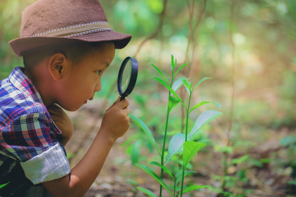 kids love to learn about the rainforest